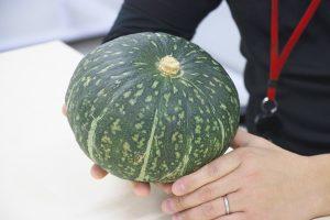 おいしいかぼちゃは形じゃない。農家との助け合い