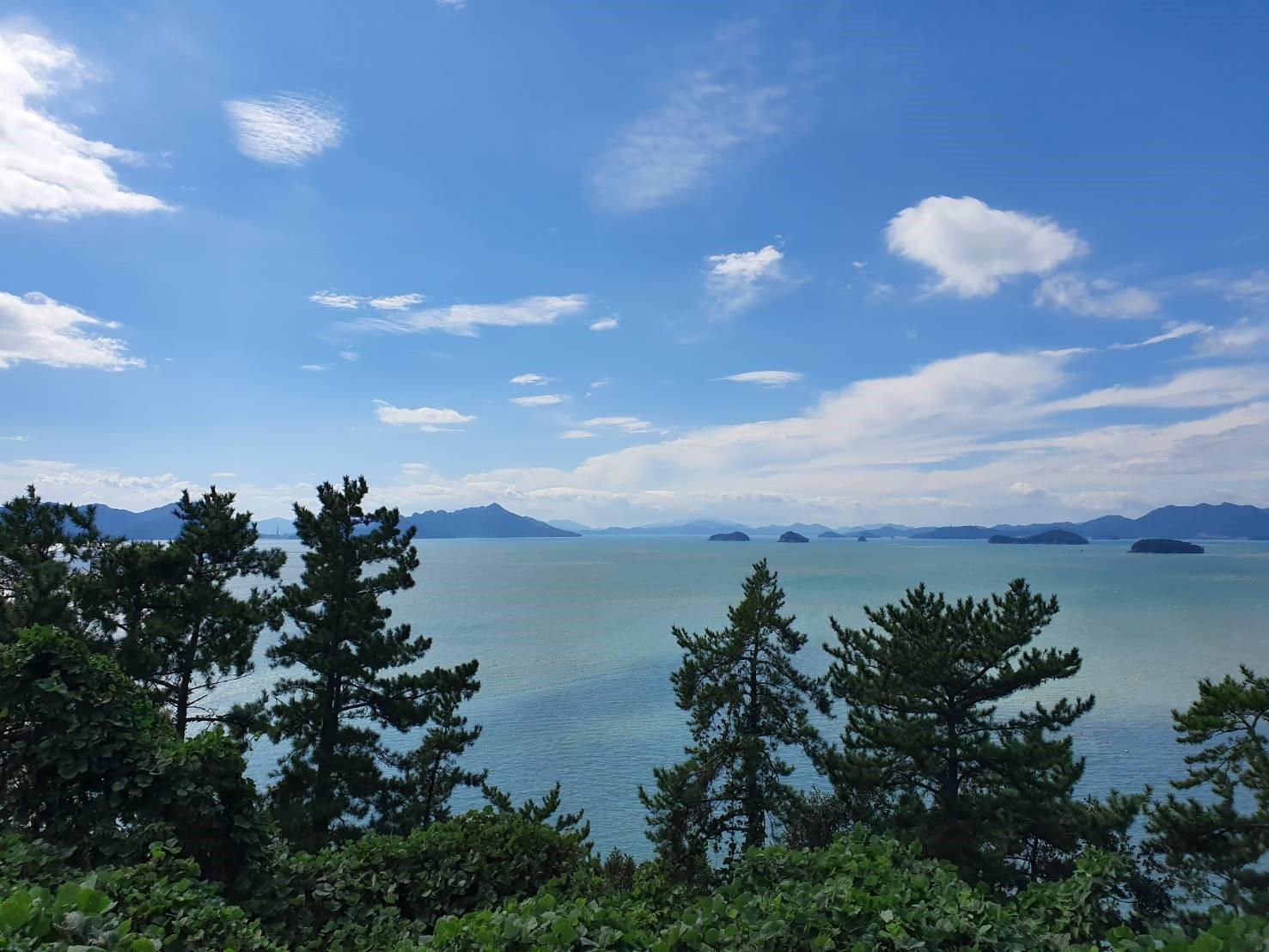 世界有数のきれいな海で育った韓国産かきのフライ